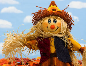 Protect your scarecrow from squirrels